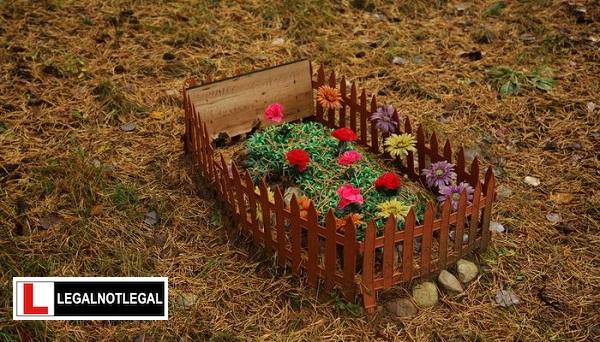 Burying My Dog In My Yard - Legal Not Legal